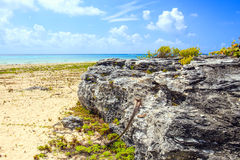 海滨del卡门海滩,墨西哥 图库摄影