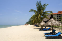 海滩langkawi掌上型计算机日落被掀动的结构树 库存照片