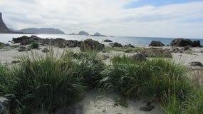 海滩Langoya,挪威 免版税图库摄影