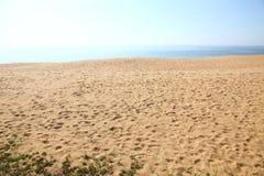 海滩sand.summer背景 免版税图库摄影