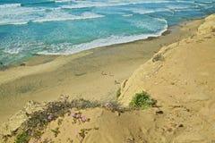 海滩Torrey Pine圣地亚哥加利福尼亚 库存图片