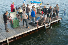 浸没塔林的海运日的潜水员 免版税库存图片