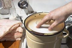 浸泡肉在盐水 免版税库存图片