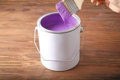 浸洗刷子的妇女入与紫罗兰色油漆的锡罐 库存图片