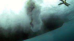 浸洗游泳水下的看法的轻潜水员从小船 影视素材