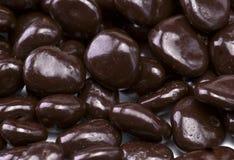 涂了巧克力的葡萄干 免版税库存照片