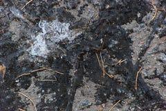 涂柏油与肮脏的冰的纹理 库存照片