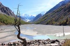 消失的湖Maashey 免版税图库摄影