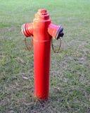 消防栓在城市公园 免版税库存照片