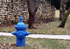 消防栓 免版税图库摄影
