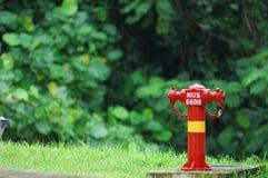 消防龙头 库存图片