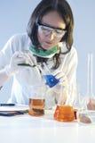 涉及烧瓶的母实验室职员充满化学制品标本在科学实验期间 图库摄影