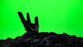 涌现从地面坟墓的蛇神手 日历概念日期冷面万圣节愉快的藏品微型收割机说大镰刀身分 绿色屏幕 008 股票视频