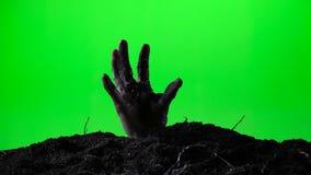 涌现从地面坟墓的蛇神手 日历概念日期冷面万圣节愉快的藏品微型收割机说大镰刀身分 绿色屏幕 016 股票录像