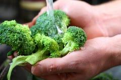 洗涤在厨房水槽的人的手硬花甘蓝菜 免版税库存照片