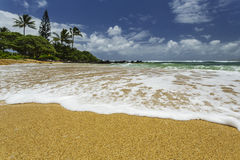 洗涤在岸的白海泡沫 库存图片
