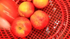 洗涤桃子在水中 影视素材