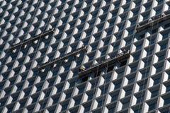 洗涤现代摩天大楼的窗口的工作者 库存照片