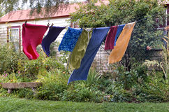 洗涤的垂悬在晒衣绳 库存图片