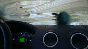 洗涤的汽车 股票视频