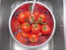 洗涤的蕃茄 库存图片