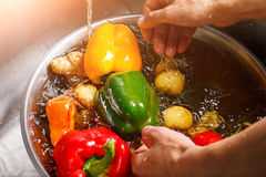 洗涤辣椒粉和土豆的手 图库摄影