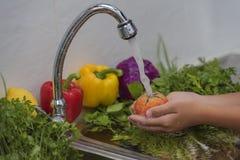 洗涤水果和蔬菜 库存图片