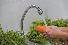 洗涤水果和蔬菜 免版税库存照片