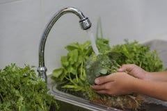 洗涤水果和蔬菜 免版税库存图片