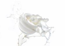 润湿在白色背景隔绝的大牛奶飞溅的奶油色,润湿的牛奶用牛奶滴下 免版税图库摄影