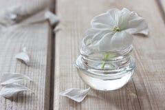 润湿的化妆水和花 免版税库存照片