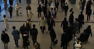 涩谷驻地的走的人自东京白天 股票视频