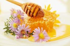 液体蜂蜜和蜂窝与花和浸染工 免版税库存图片