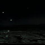 水滴液体,被形成一根黑暗的小的柱子和很多水滴 库存照片
