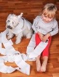淘气孩子和白色坐髯狗的小狗  免版税库存照片