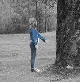 淘气树 库存图片