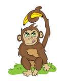 淘气的猴子 免版税库存照片