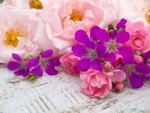 淡粉红和明亮的桃红色玫瑰和大竺葵花束 免版税库存图片