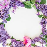 淡紫色分支、郁金香和叶子的花卉样式在白色背景 平的位置,顶视图 植物群框架 免版税库存图片