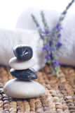 淡紫色向禅宗扔石头 免版税库存图片
