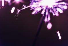 淡紫色孟加拉闪烁发光物在黑背景点燃以纪念圣诞节新年和生日庆祝 库存图片