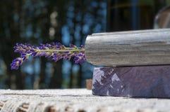 淡紫色是书签 库存照片
