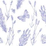 淡紫色样式 向量例证