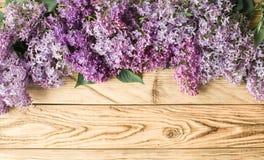 淡紫色框架 免版税库存图片