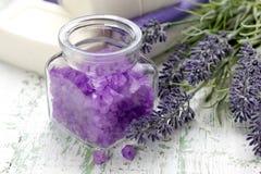 淡紫色海运盐 图库摄影