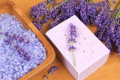 淡紫色温泉 库存照片