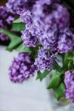 淡紫色特写镜头花束  免版税库存图片