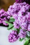 淡紫色特写镜头花束  库存照片