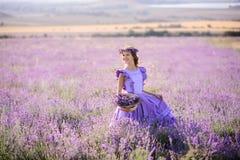 淡紫色的领域的美丽的女孩在日落的 免版税图库摄影