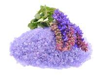 淡紫色盐海运 库存图片